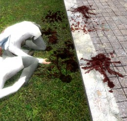 extra blood.zip For Garry's Mod Image 1