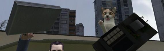 cat-4_v1.0.zip