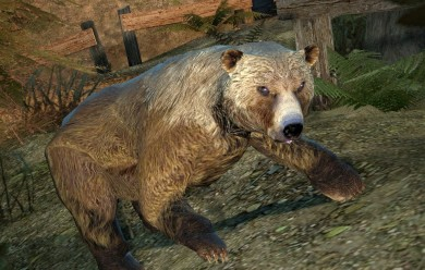 Bear Model For Garry's Mod Image 1