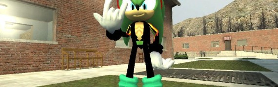 Scourge the hedgehog hexed.