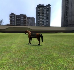 Hover Horse! For Garry's Mod Image 1