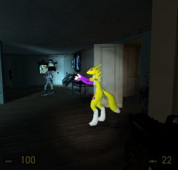 renamon2009_alyx_hl2.zip For Garry's Mod Image 2