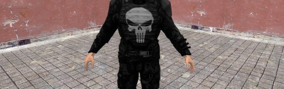 The Punisher.zip