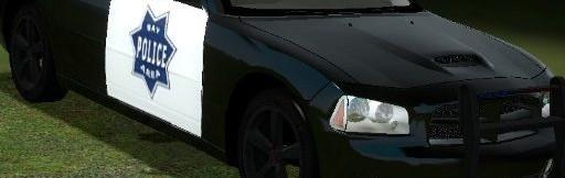 Driver SF TDM skins