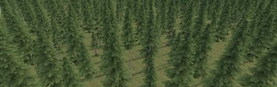 forest.zip