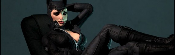 Catwoman - The alluring thief
