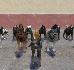 Animal Pack (Dragon Age) For Garry's Mod Image 1