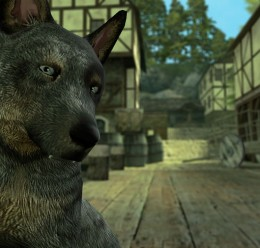 Animal Pack (Dragon Age) For Garry's Mod Image 3