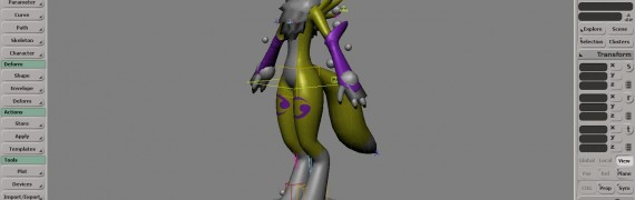 renamon_2009_resources.zip