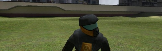 helmet_player_model.zip