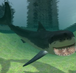 Shark Pack.zip For Garry's Mod Image 3