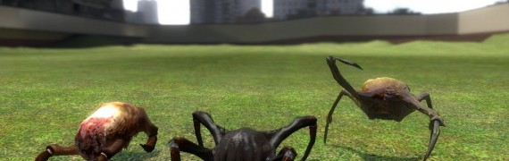 half-life_2_beta_headcrabs_+_p