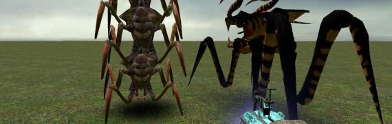 arachnid.zip