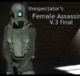 Female Assassin Final.zip For Garry's Mod Image 2