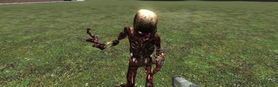 fast_zombie_skin.zip