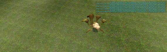 shieldbug_playermodel.zip