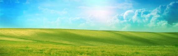 field_background.zip