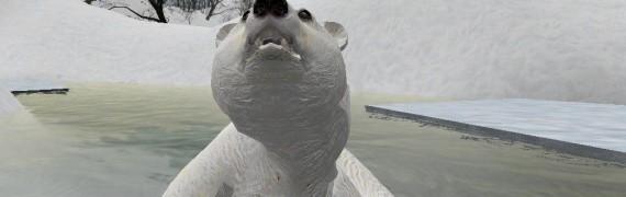 polarbear.zip