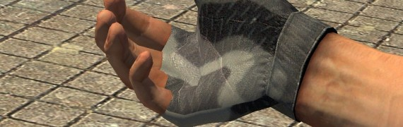 8 CS:S Camo Hands