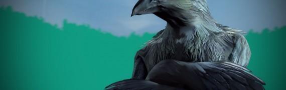Raven Warrior (Guild Wars 2)