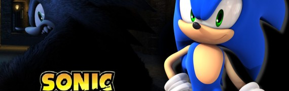 Unleashed Sonic Playermodel NP