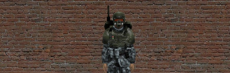 imperial_guard_snpc.zip For Garry's Mod Image 1