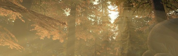 more_forest_bgs.zip