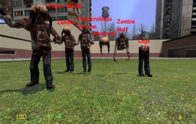 half-dead's_hl2_zombie.zip_(1) For Garry's Mod Image 2