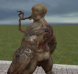 Black Mesa Alien Grunt + Fix For Garry's Mod Image 3