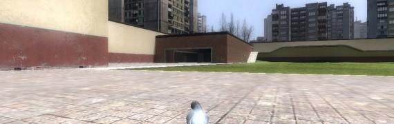 Pigeon Pill Beta
