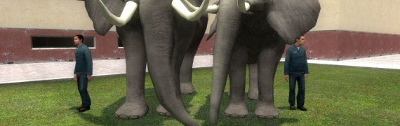 elefun_the_elephant_from_unlea