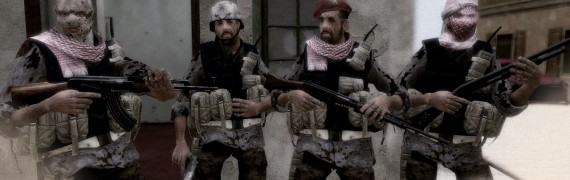 cod_4_insurgents.zip
