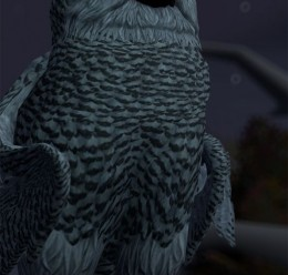 Blu, Jewel, and a Snowy Owl For Garry's Mod Image 3
